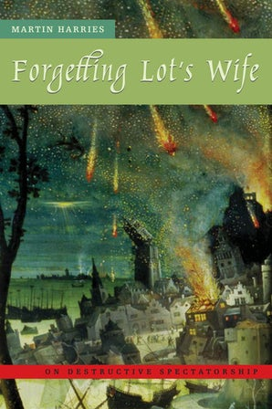 Forgetting Lot's Wife Paperback  by Martin Harries