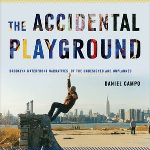 The Accidental Playground Paperback  by Daniel Campo
