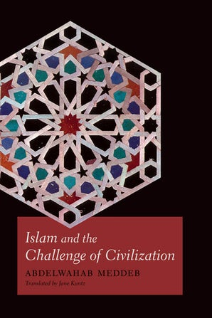 Islam and the Challenge of Civilization Paperback  by Abdelwahab Meddeb