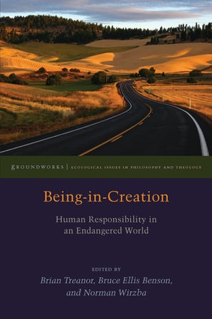 Being-in-Creation Paperback  by Brian Treanor