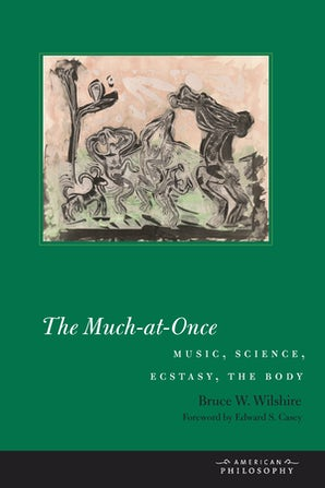 The Much-at-Once Paperback  by Bruce W. Wilshire