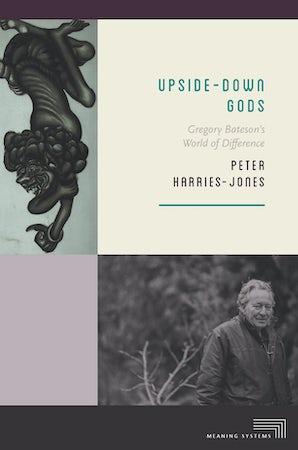 Upside-Down Gods Paperback  by Peter Harries-Jones