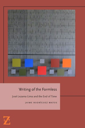 Writing of the Formless Paperback  by Jaime Rodríguez Matos