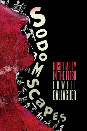 Sodomscapes Paperback  by Lowell Gallagher