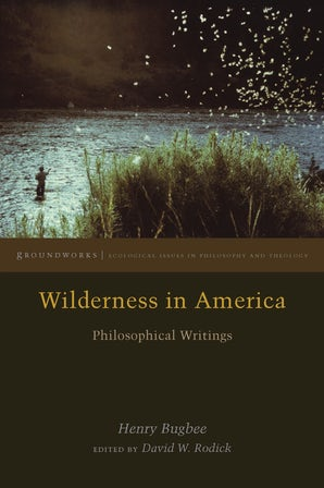 Wilderness in America Paperback  by Henry Bugbee