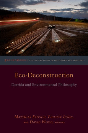 Eco-Deconstruction Paperback  by Matthias Fritsch