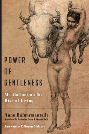 Power of Gentleness Paperback  by Anne Dufourmantelle