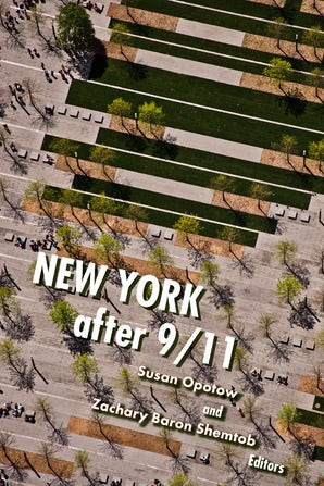 New York After 9/11 Paperback  by Susan Opotow