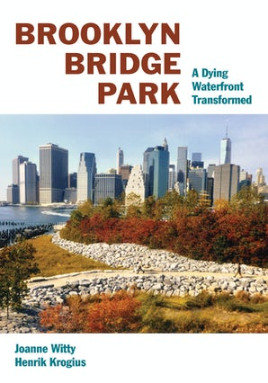 Brooklyn Bridge Park Paperback  by Joanne Witty