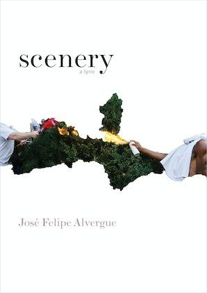 scenery Paperback  by José Felipe Alvergue