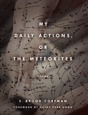 My Daily Actions, or The Meteorites Paperback  by S. Brook Corfman