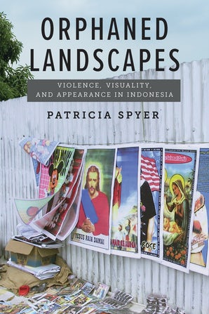 Orphaned Landscapes Paperback  by Patricia Spyer